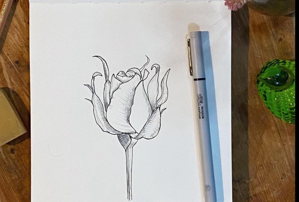 Rose shading - student project