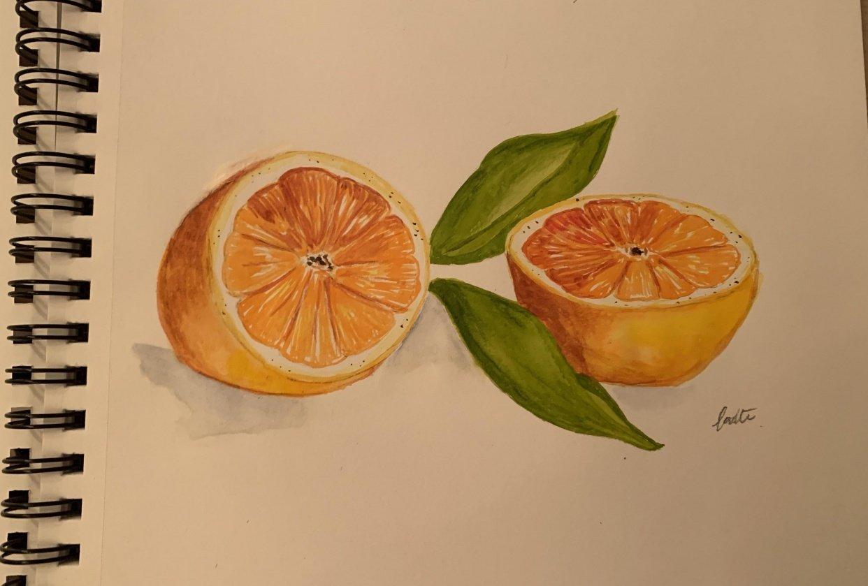 Citrus watercolor - student project