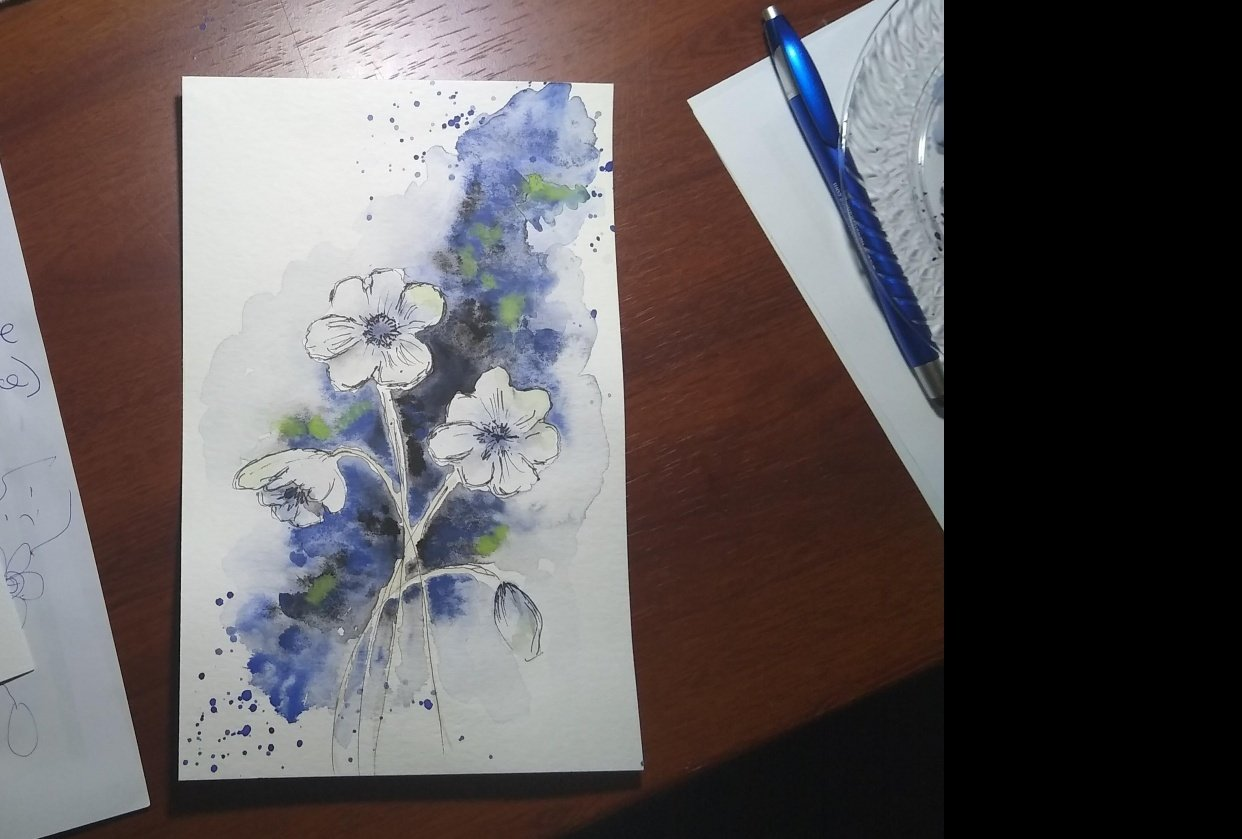 watercolor anemones - student project