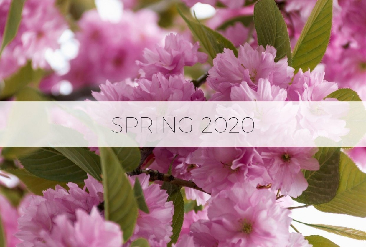 Spring 2020 - student project