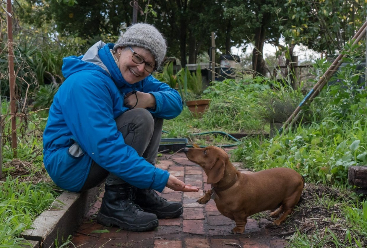 In my garden with Louis the dachshund - student project