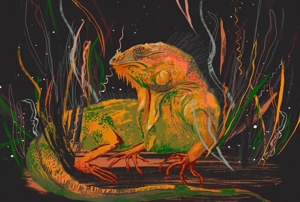 Iguana in the style of Molly Mendoza - student project