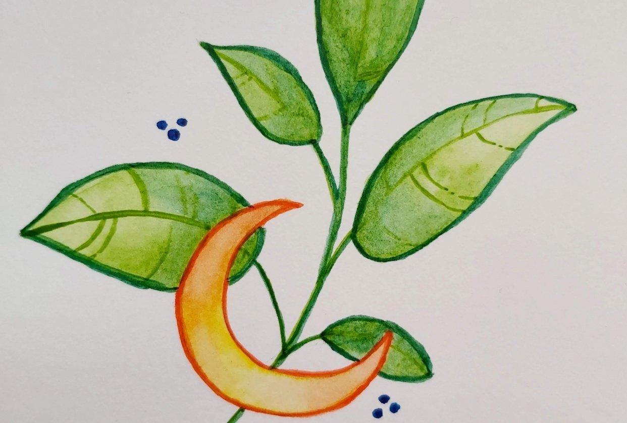 Crescent Moon - student project