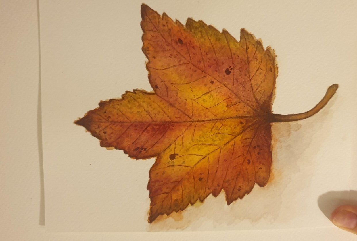 Autumn Leaf Project - student project