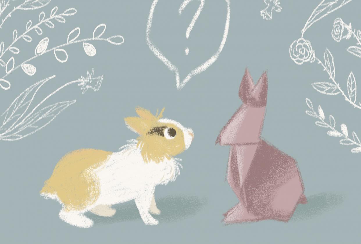 Bernie bunny - student project