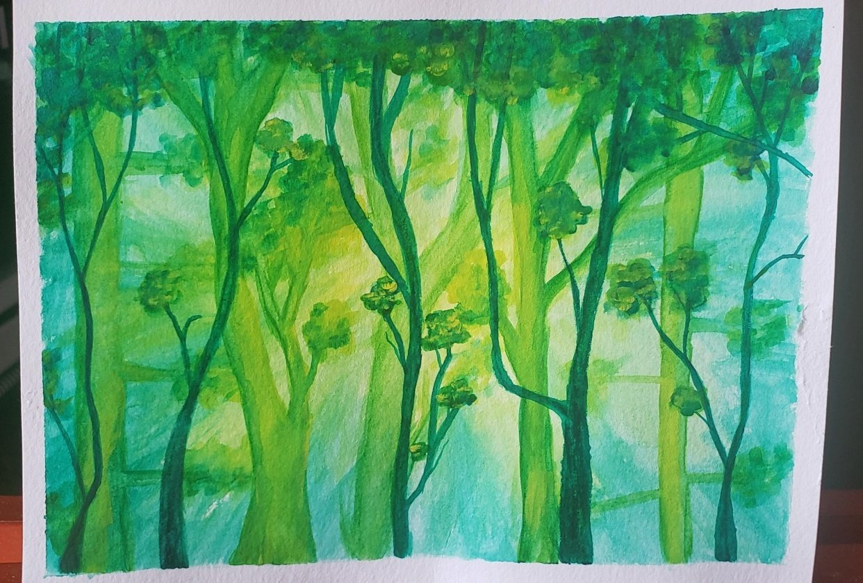 Trees with sunlight - student project