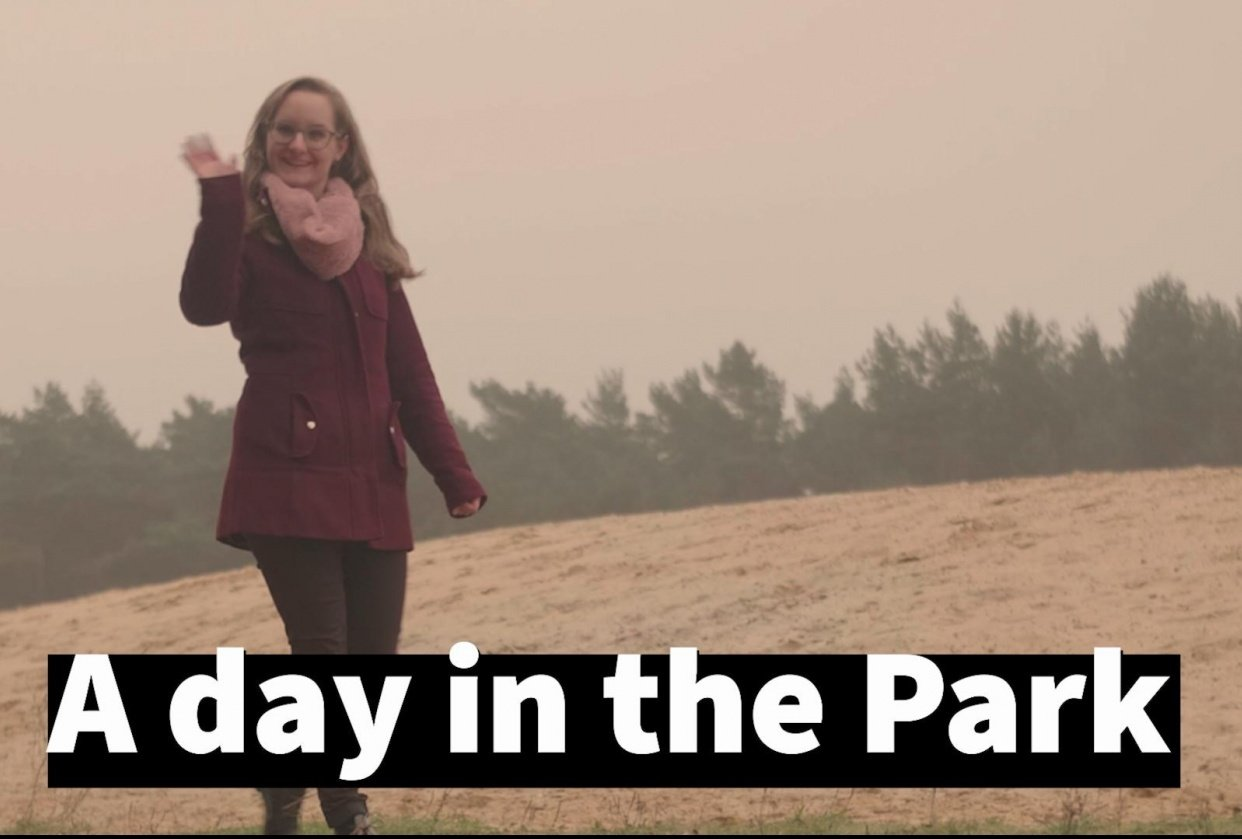 A Day in the Park - student project