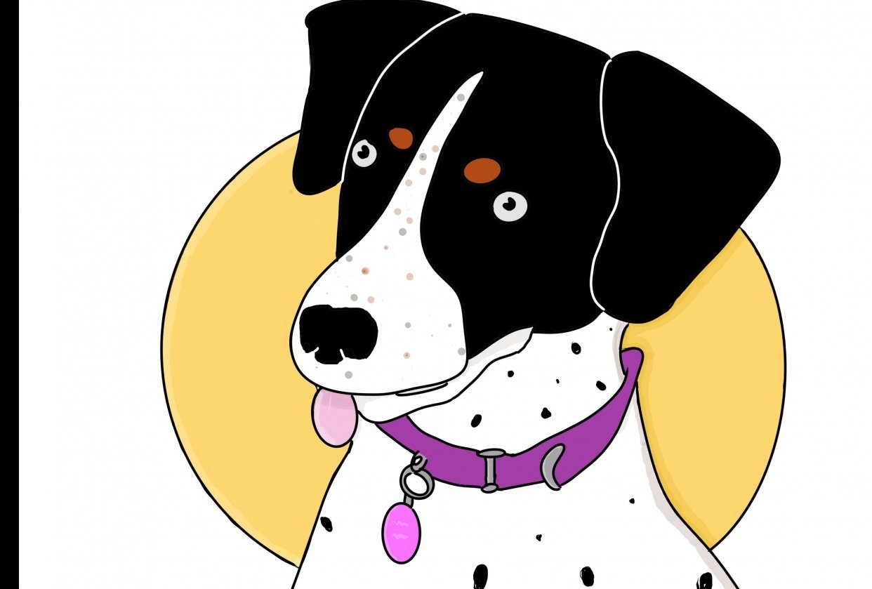 My Dog Rosie - student project