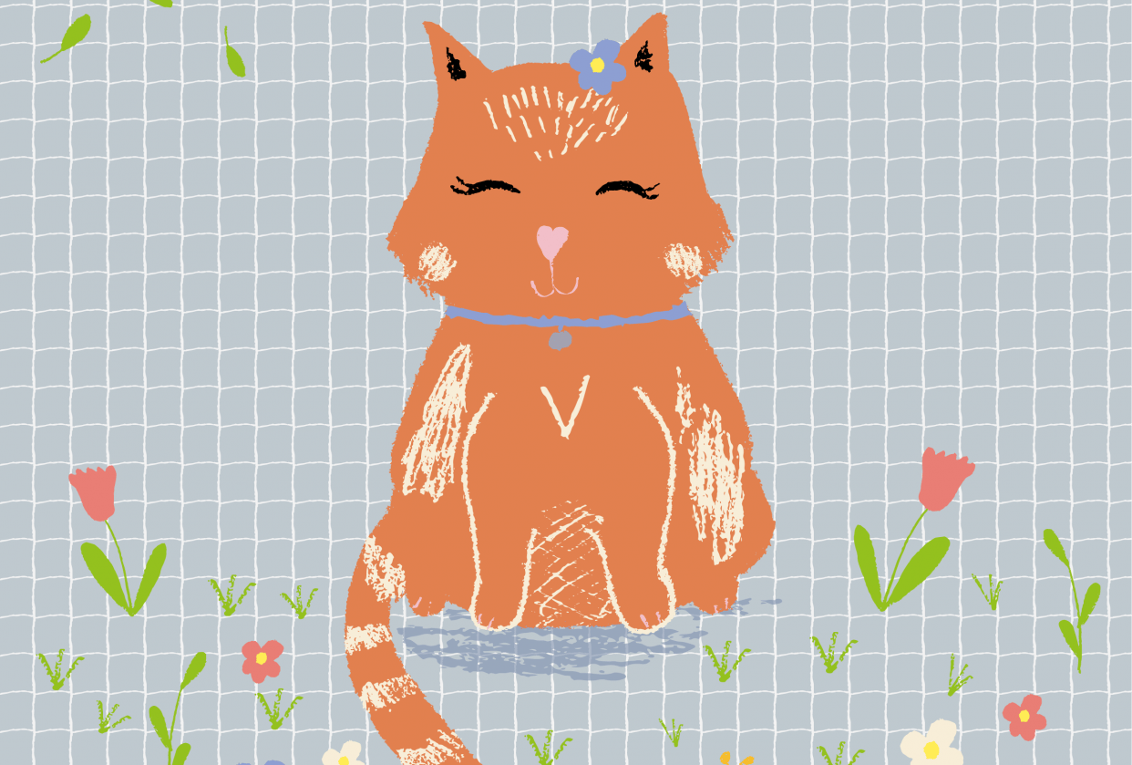 Cute cat - student project
