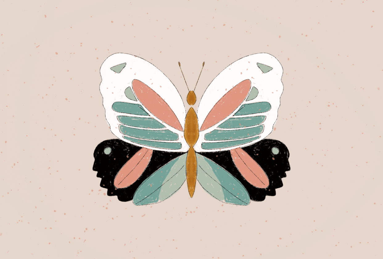 Vintage Insect Illustration - student project