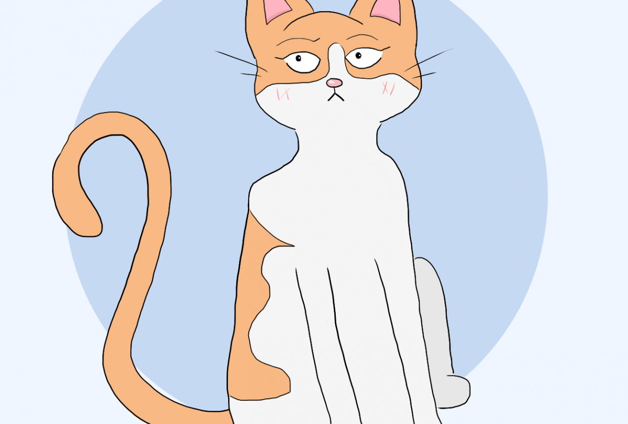 Stylized Cat - student project