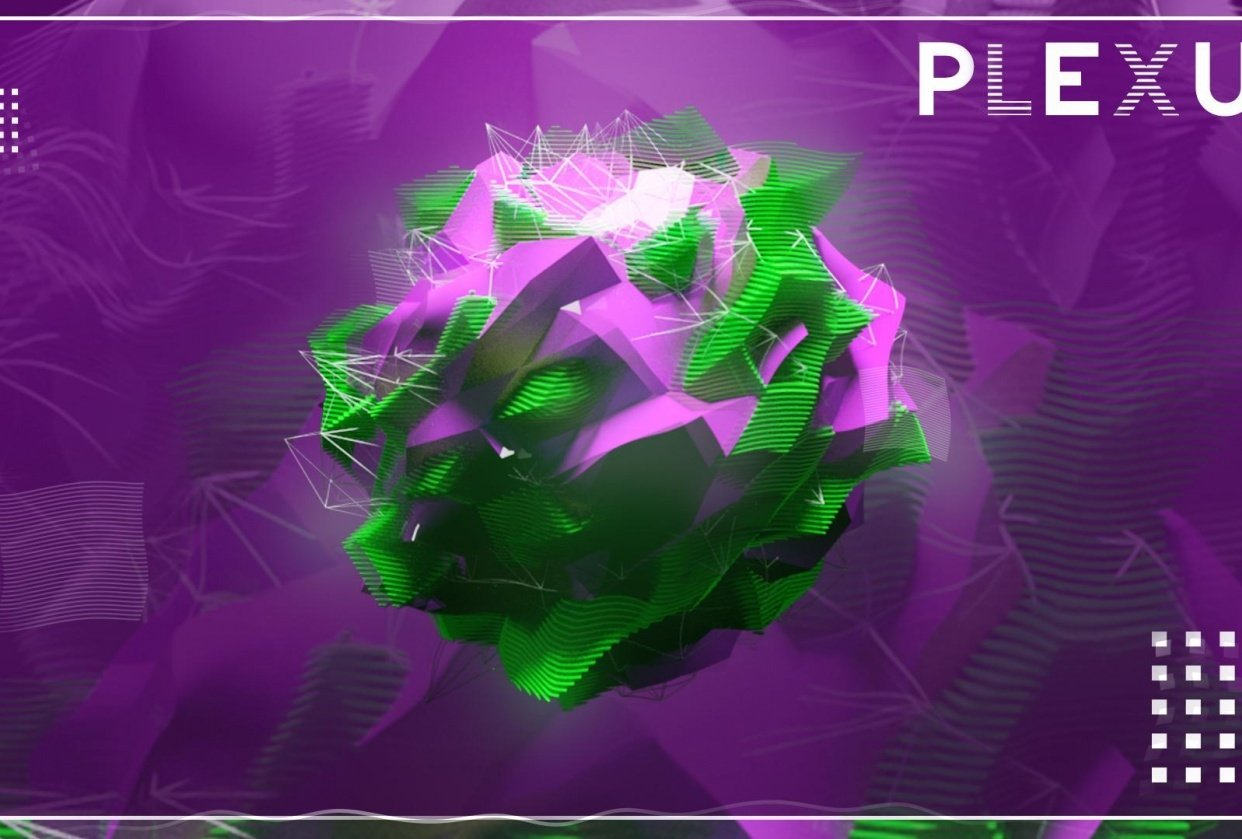 Plexus - student project