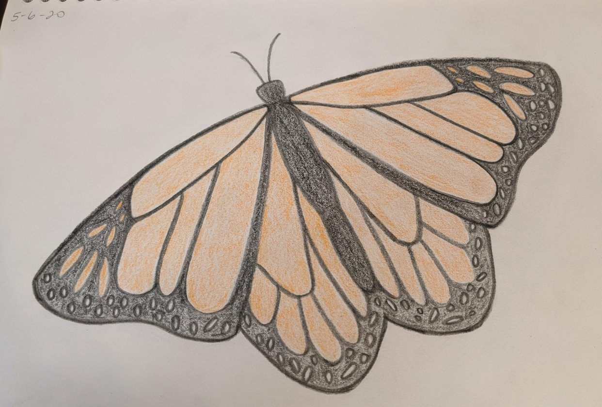 Monarch - student project
