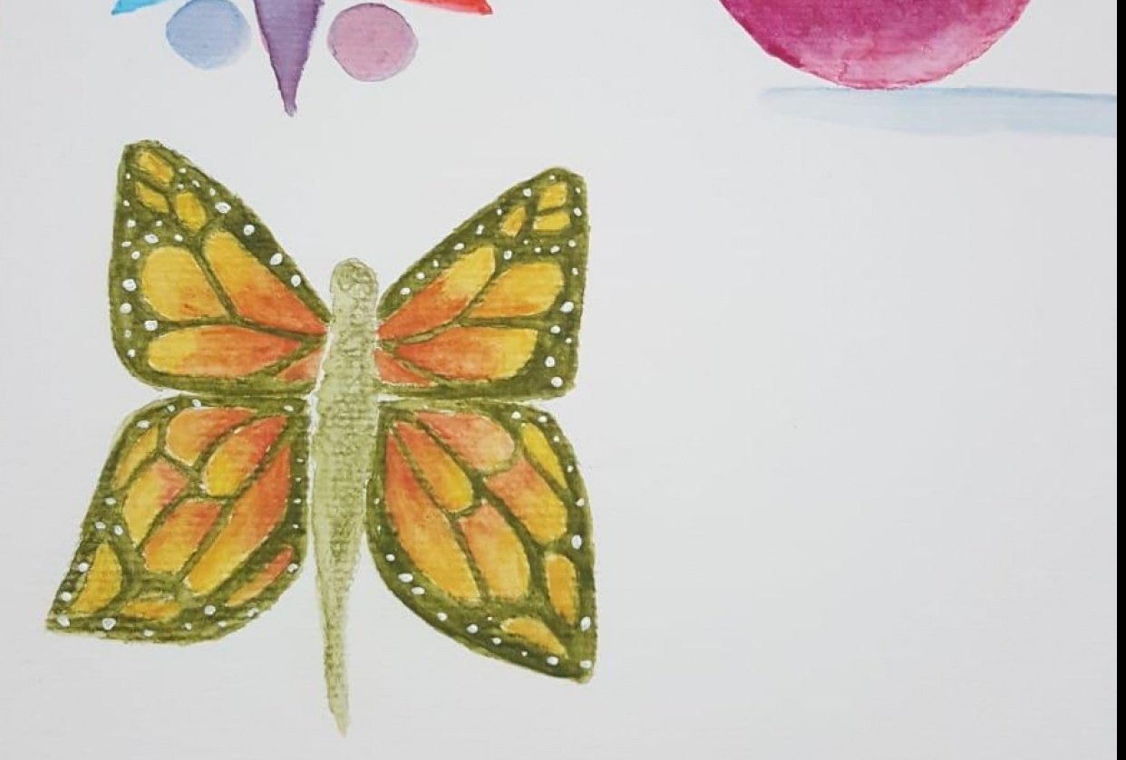 my butterfly - student project