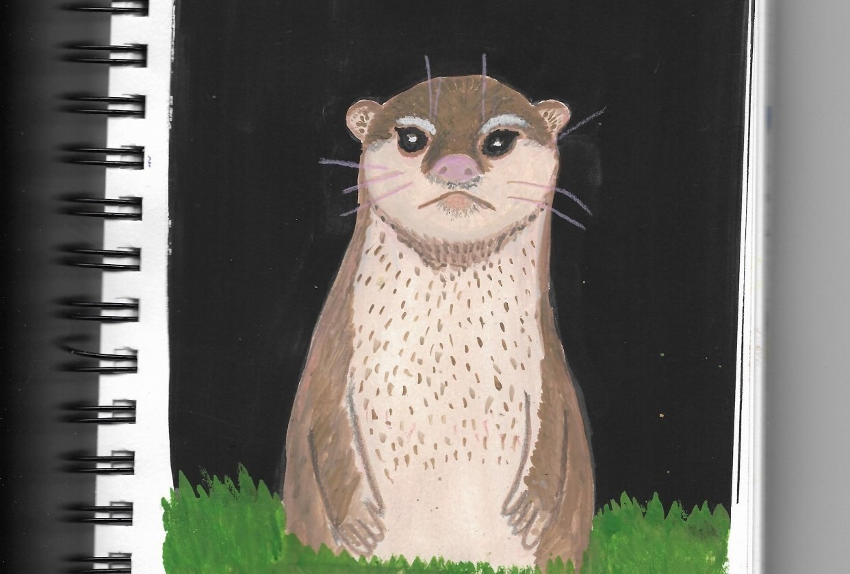 Otter - student project