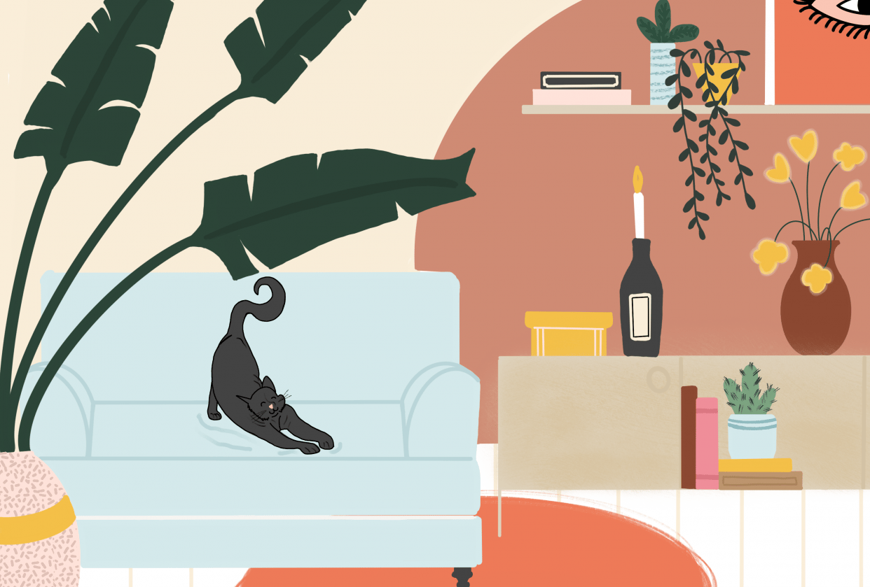 Kitty Kat in my dream house - student project