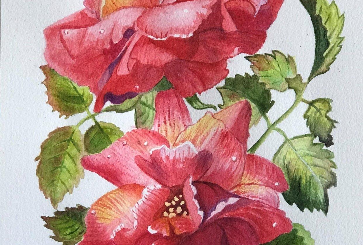Teresa's Roses - student project