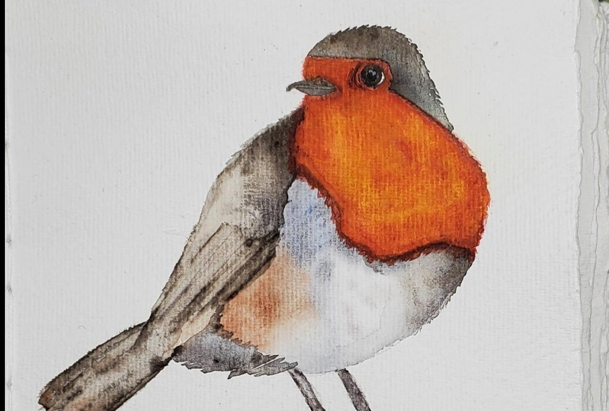 Puffy Robin - student project