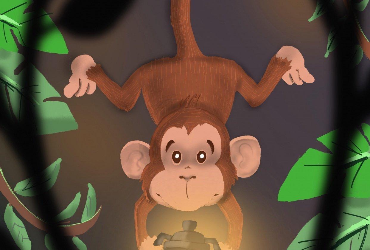 Monkey - student project
