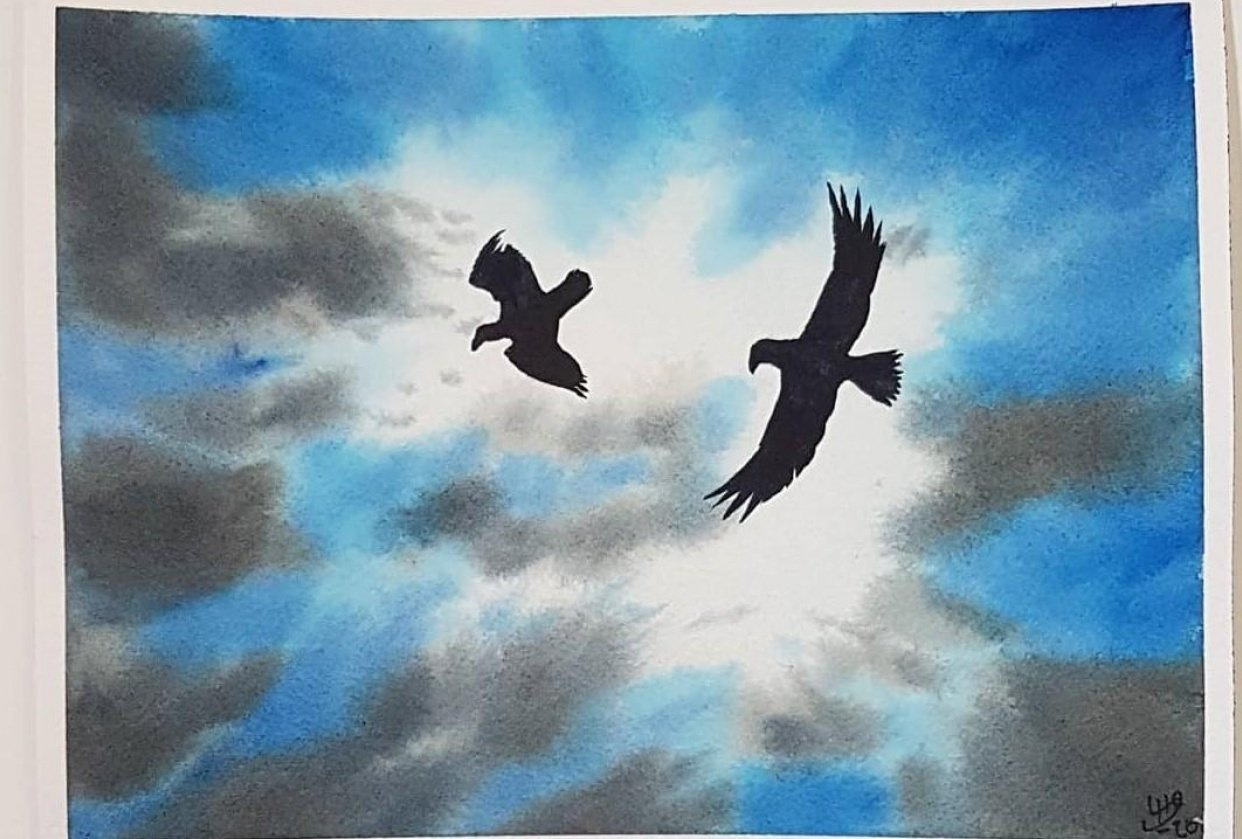 Skies, Clouds, and Birds - student project