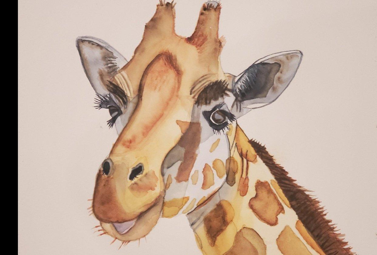 Giraffe Project - student project