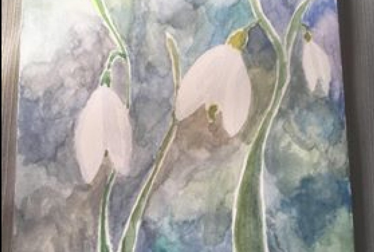 Snow drop - student project