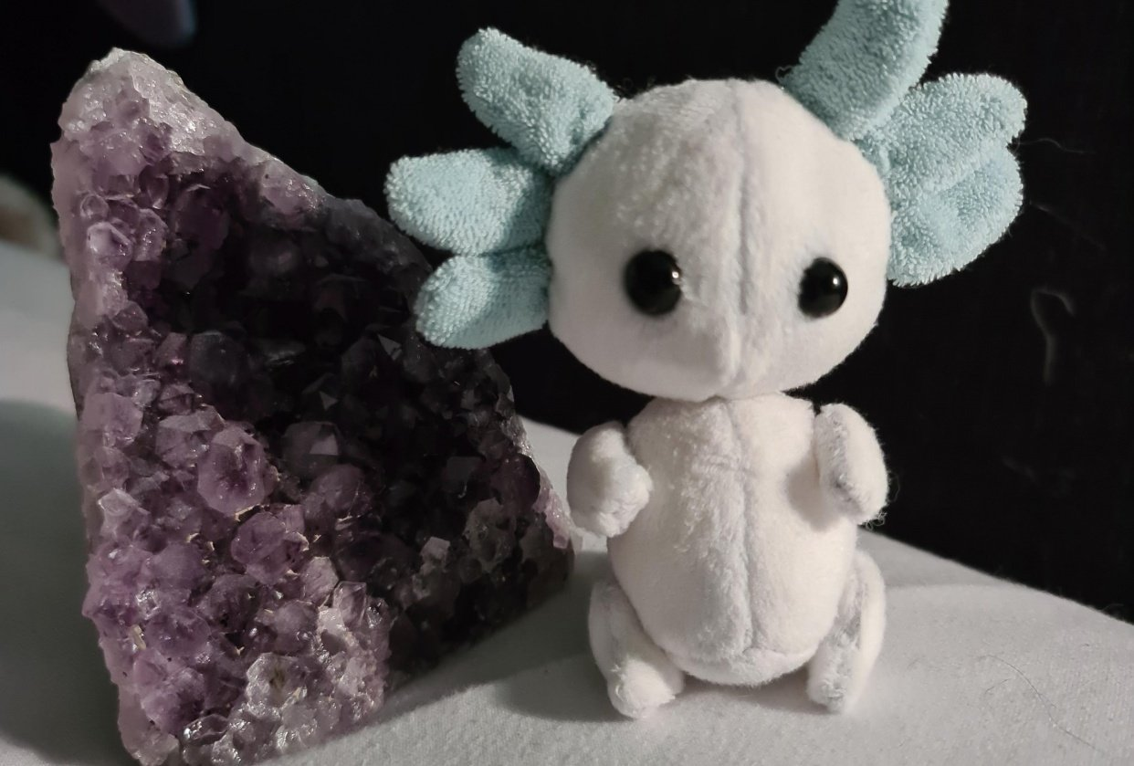 White and blue axolotl - student project