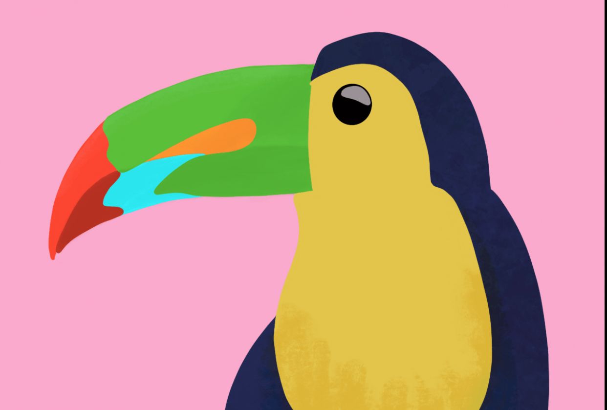 Upside Down & Toucan - student project