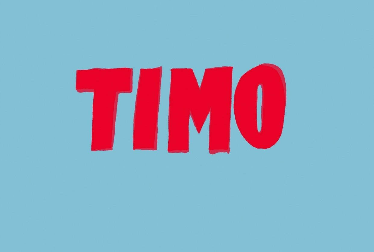 TIMO - student project
