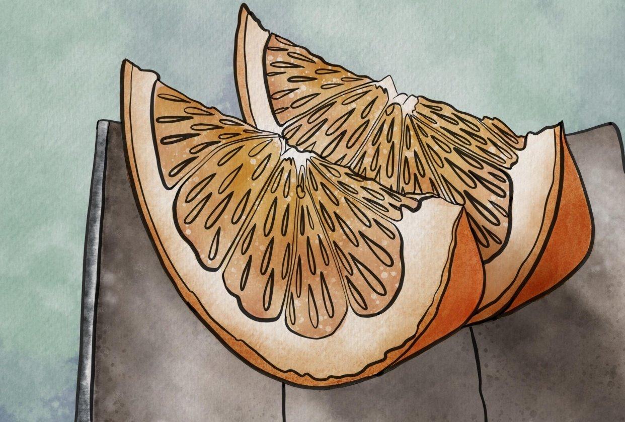 Citrus Study - student project