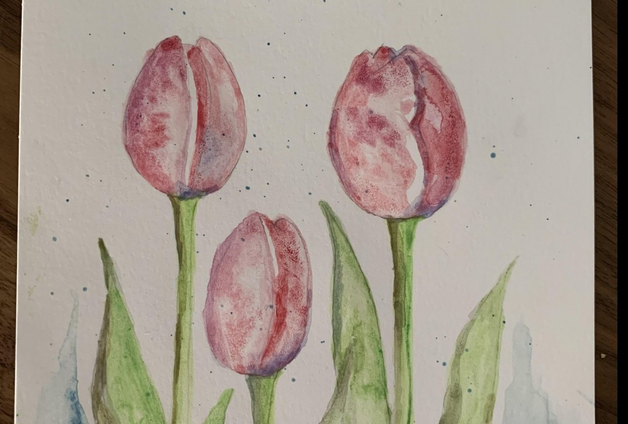 Watercolor tulips - student project
