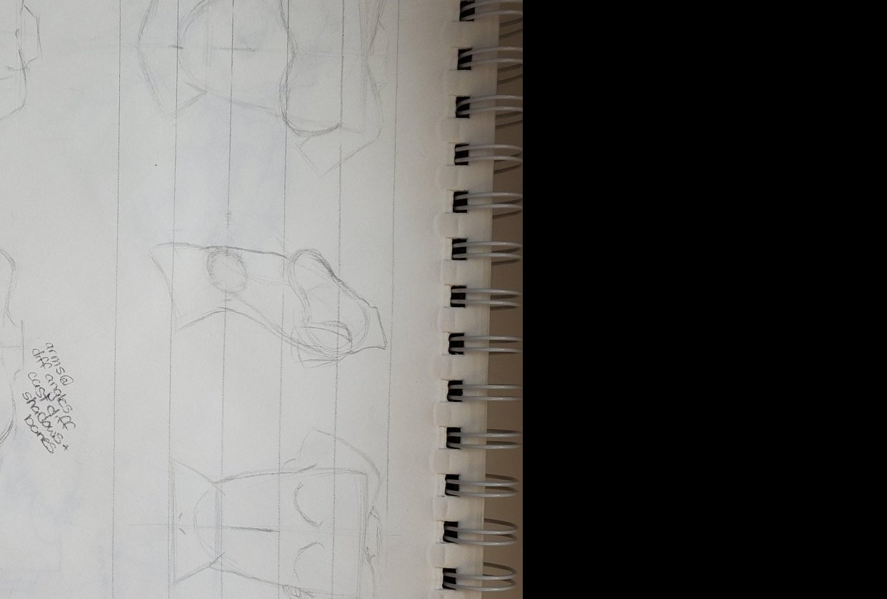 Torso Drawing - student project