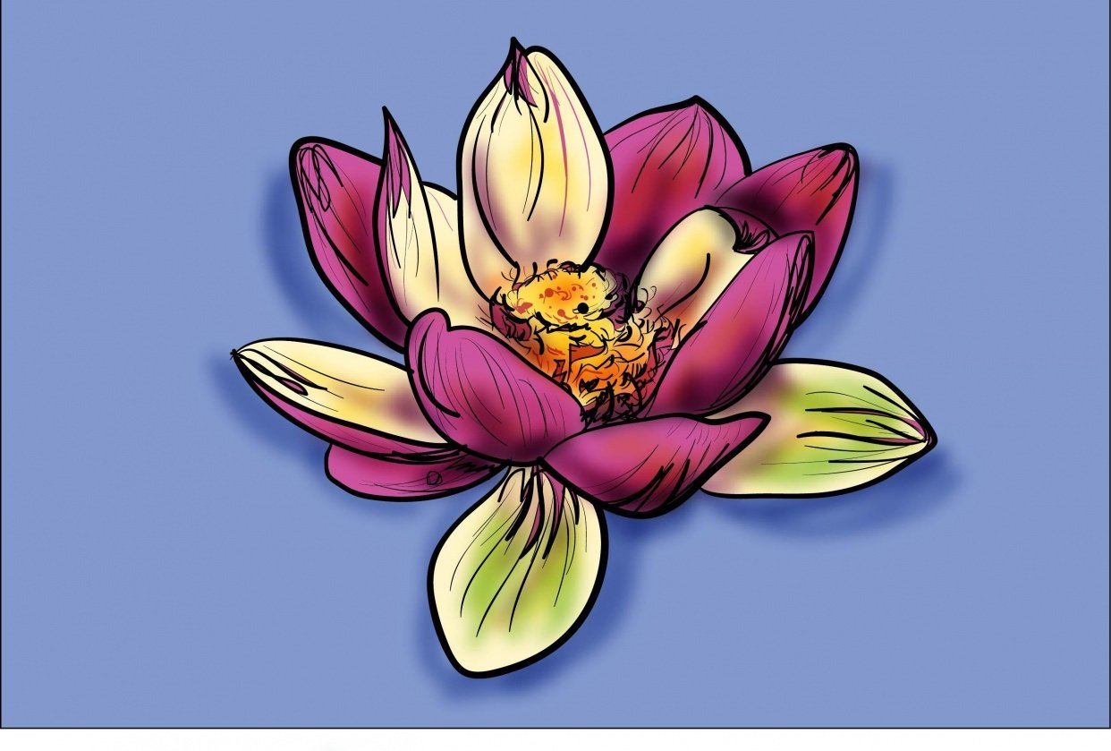 Lotus and Calla Lily - student project