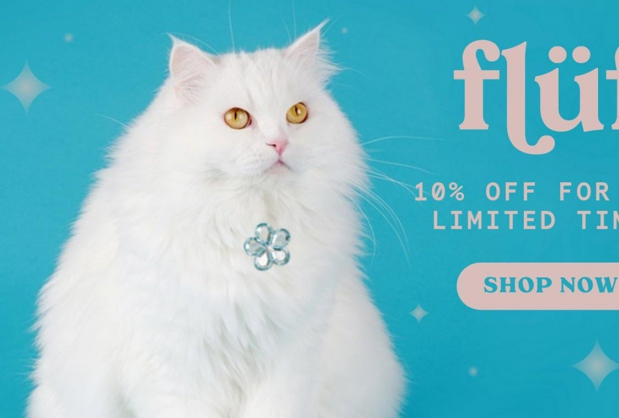 Flüf Digital Ad Campaign - student project