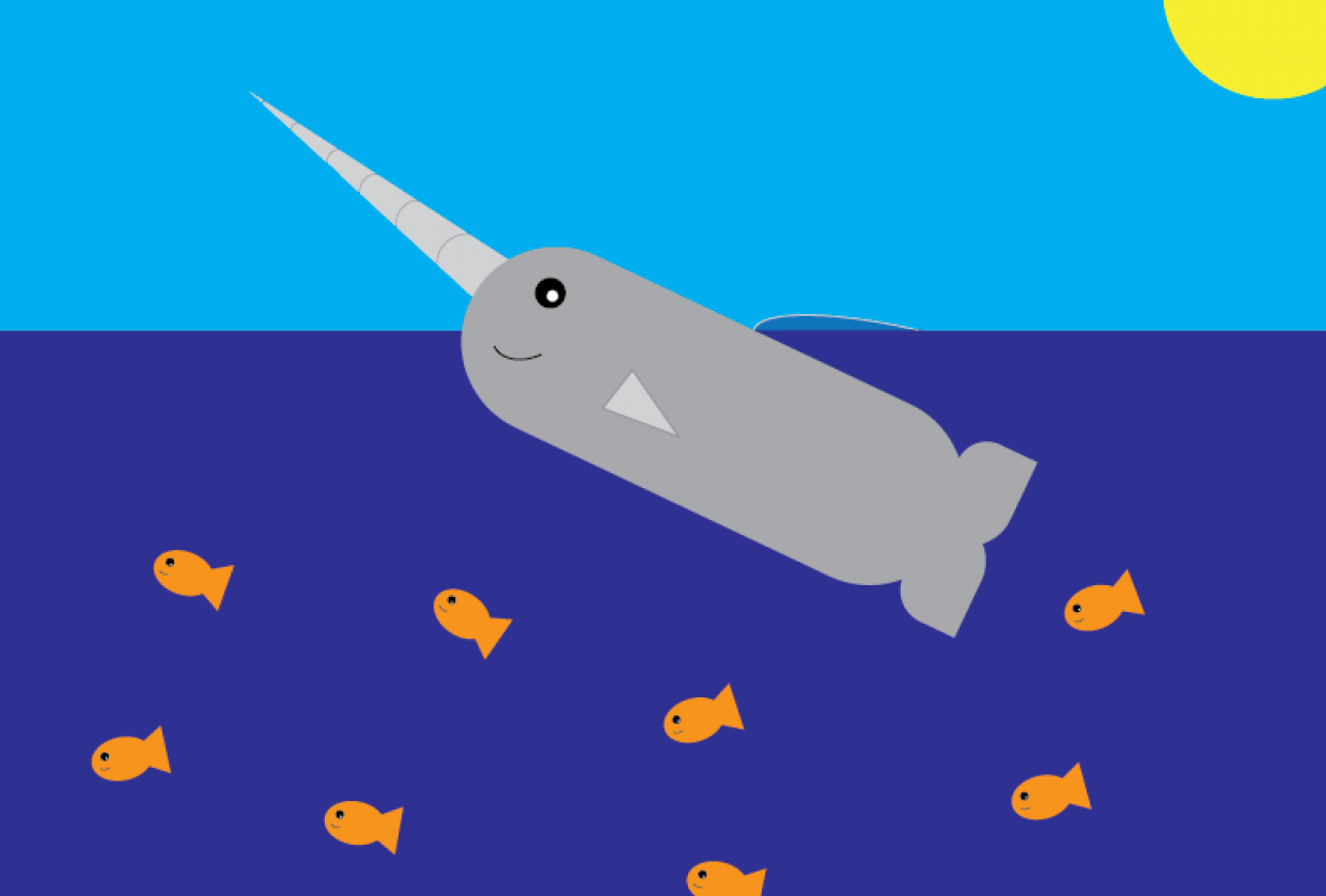 Happy Narwhal - student project