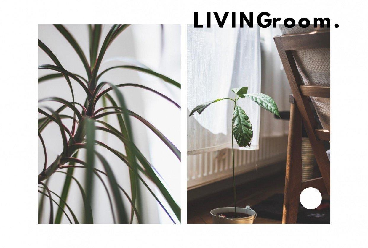 LIVINGroom. - student project