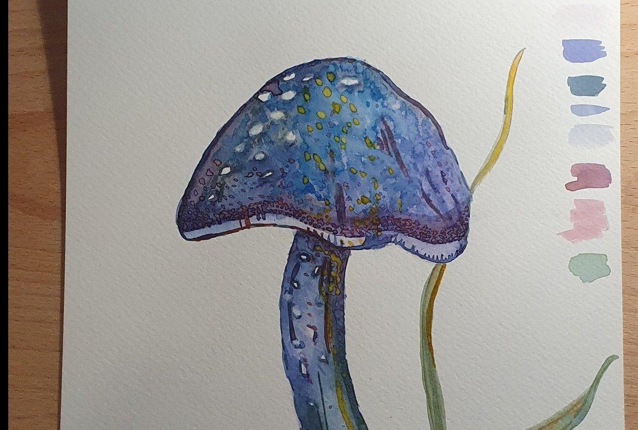 Mushroom and fern - student project