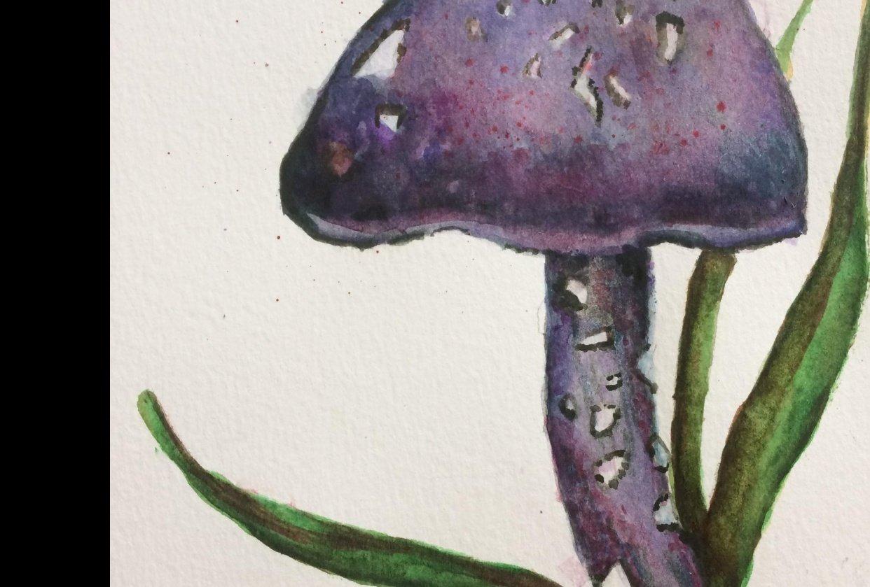Watercolor mushroom - student project
