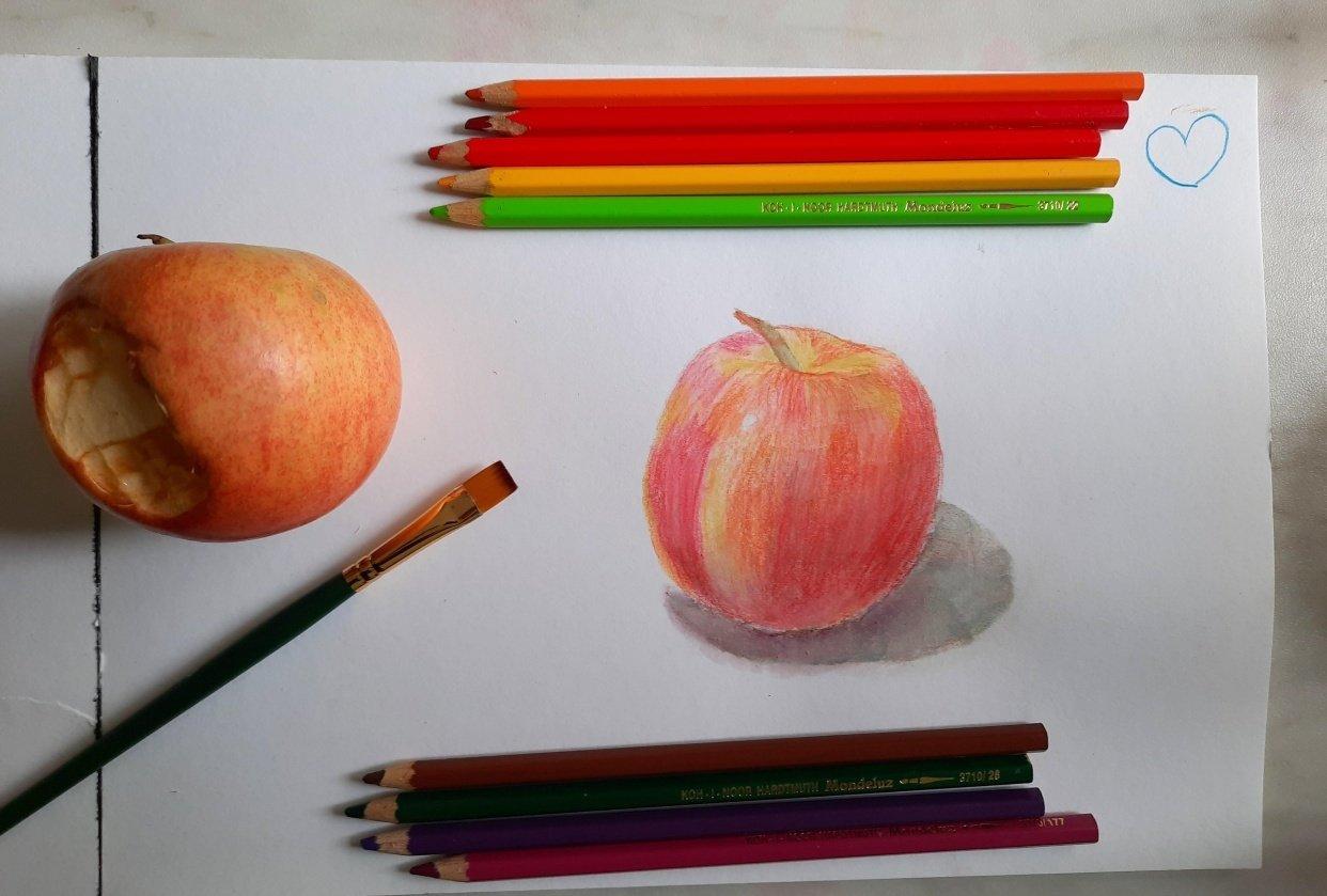 Watercolor pencils apple - student project