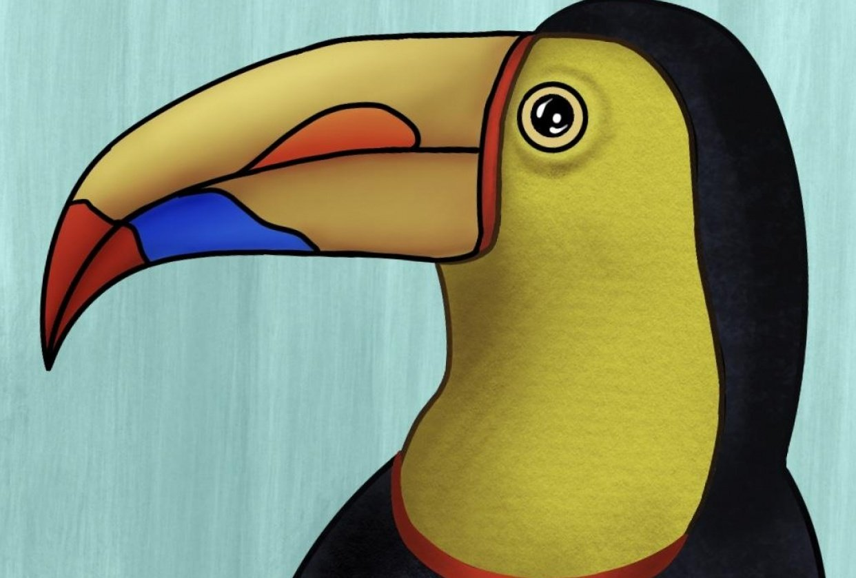 Toucan - student project