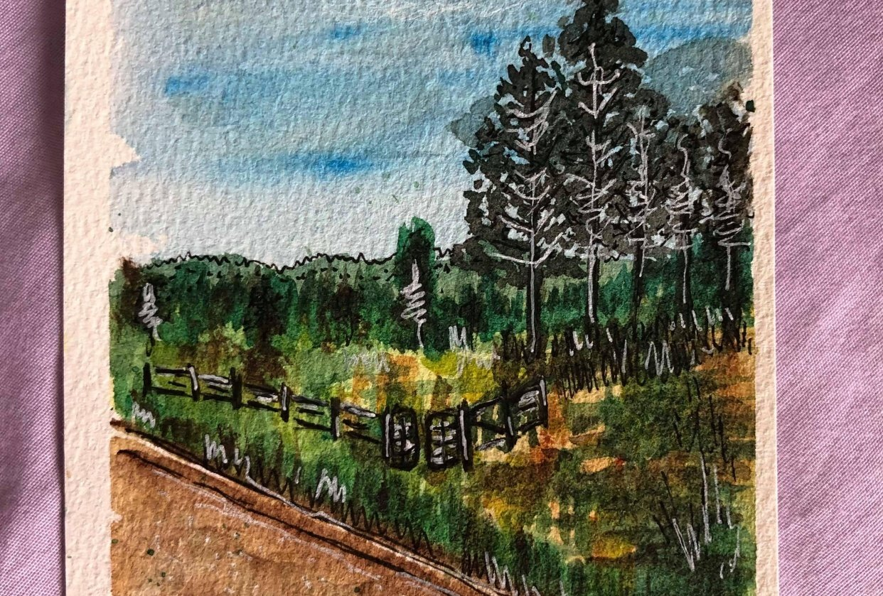 Landscapes - student project