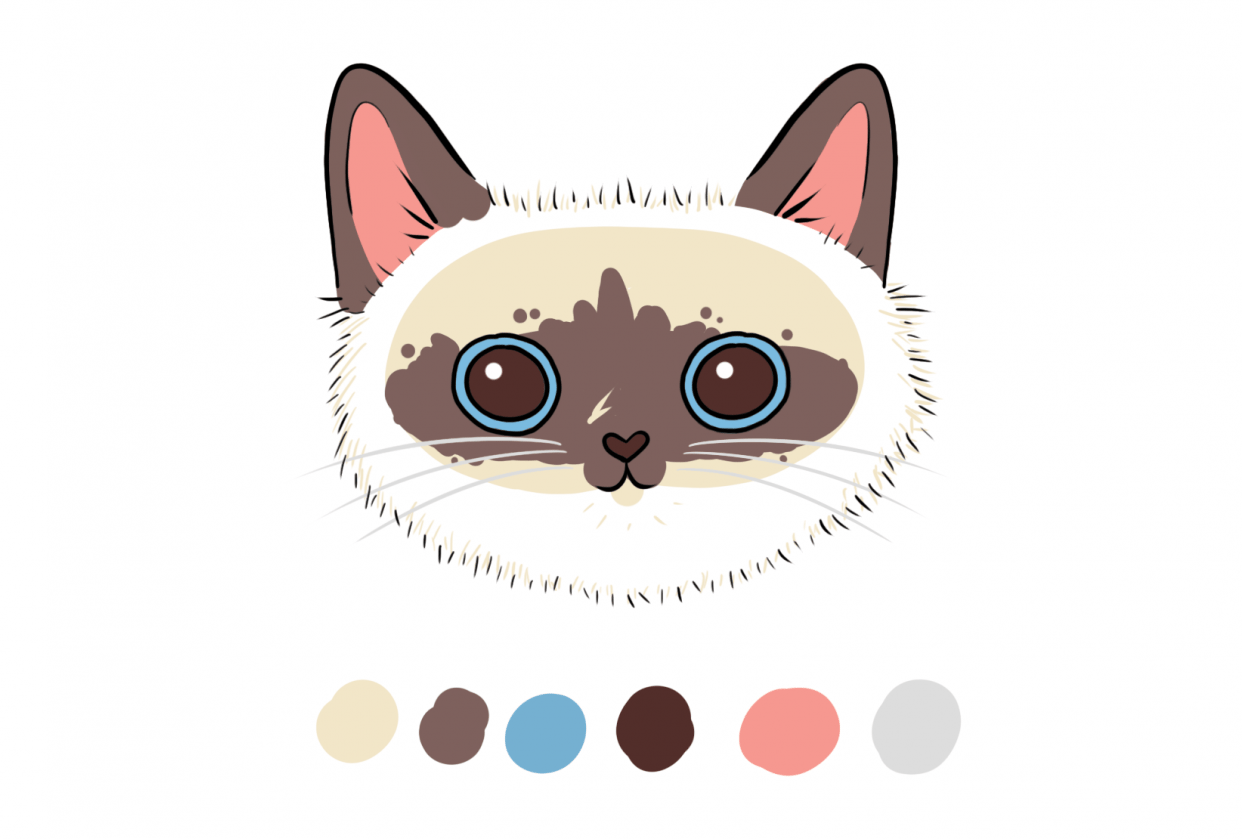 Cat Practice Project - student project