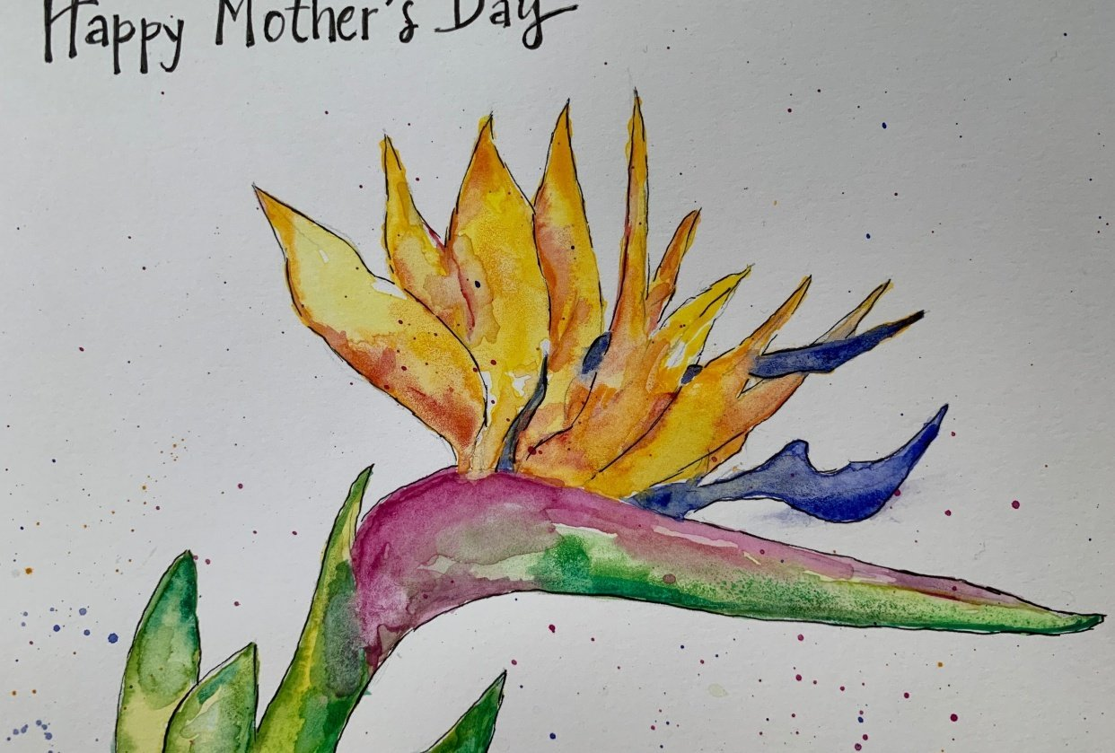 Watercolor Bird of Paradise - student project