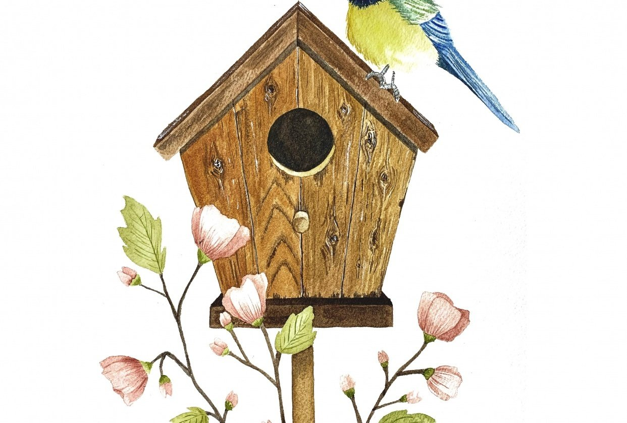 My birdhouse - student project
