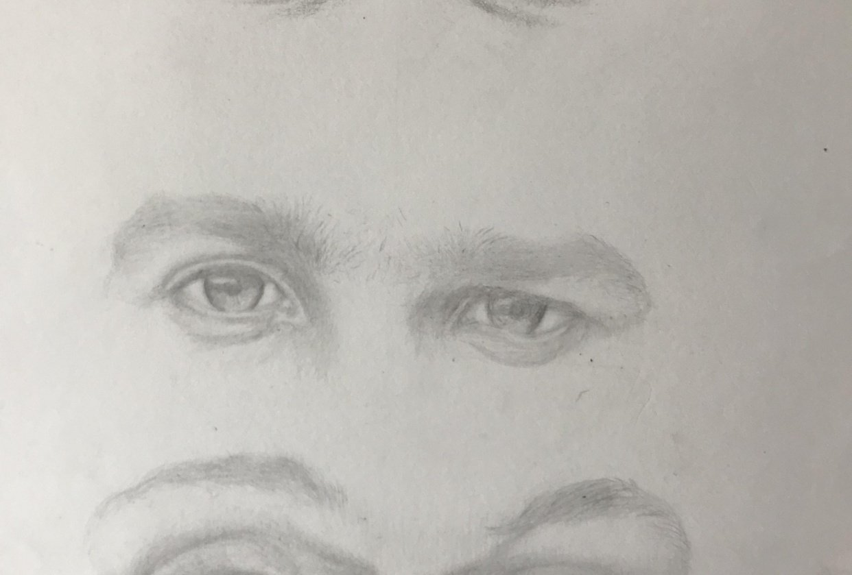 eyes, noses and lips - student project