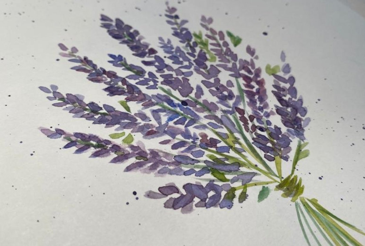 lavender and blue flowers - student project
