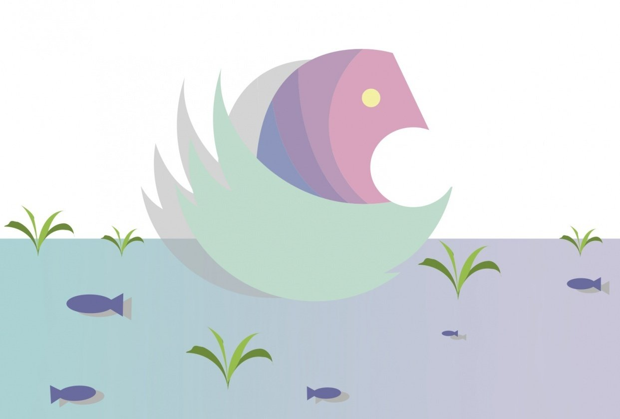 swan in lake - student project
