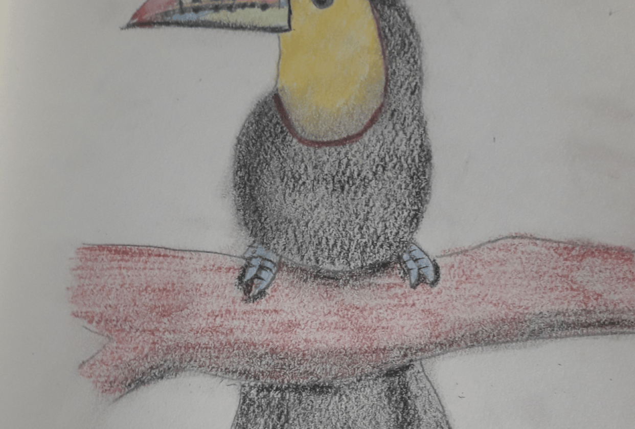 TUCAN - student project