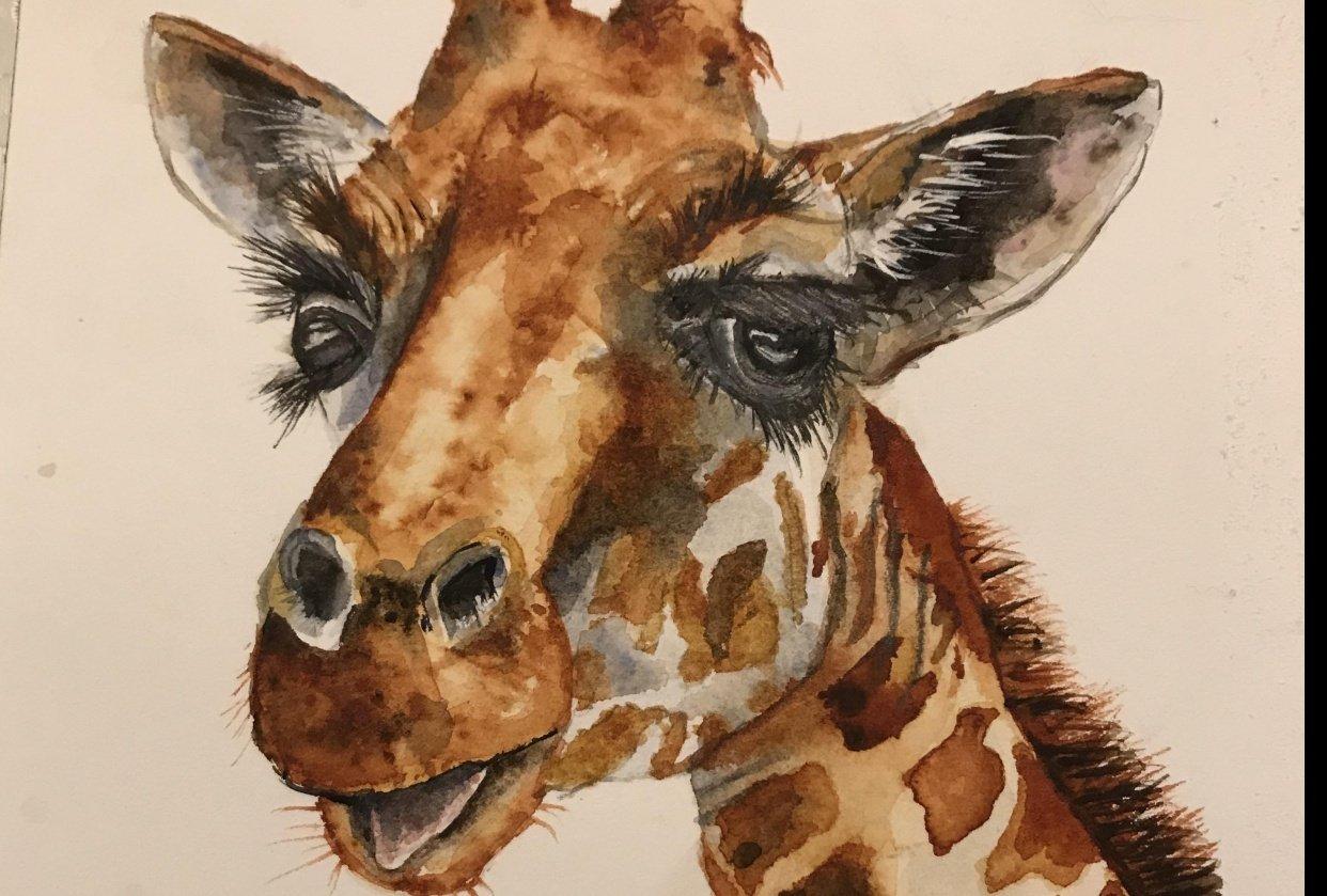 wc giraffe 1 & 2 - student project