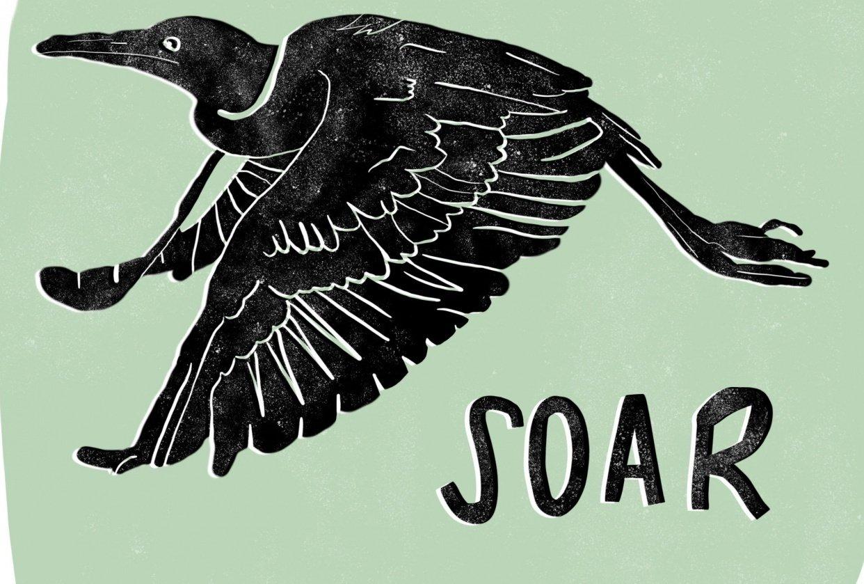 Bird Print - student project